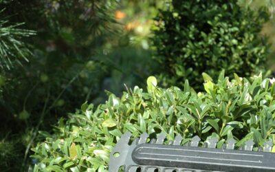 Stihl hækkeklipper – din bedste ven i haven